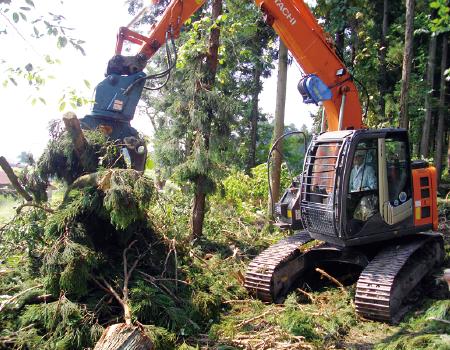 山林未利用材の利活用による林業活性化
